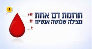 תרומת דם